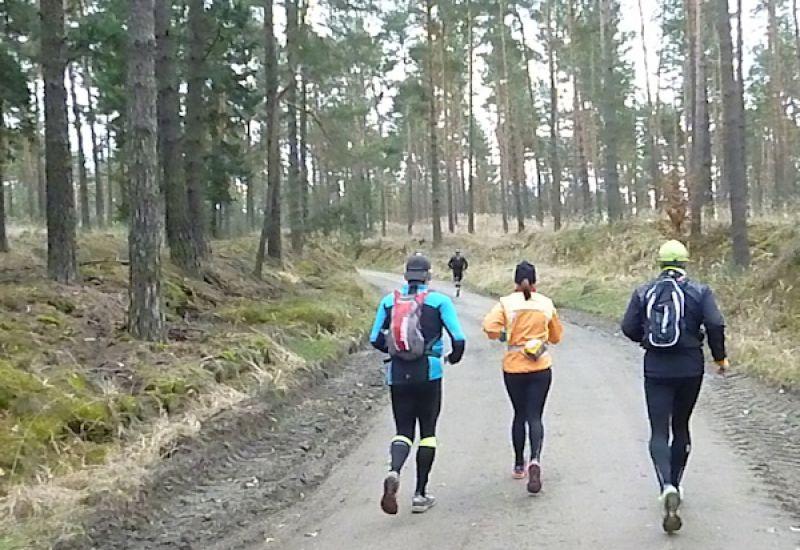 Ludwig-Leichhardt-Trail Ultralauf