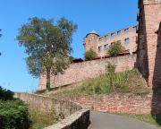 Aufstieg zur im Dreißigjährigen Krieg zerstörten Burg Wertheim