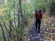 Harzer Hexenstieg, Tag 4, endlich Herbstwanderung ohne Regen