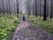 Der Harzer Hexenstieg führt nun fast ausschließlich über Pfade