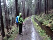 Regeneindrücke 2 – das Oberharzer Wasserregal füllt sich auf