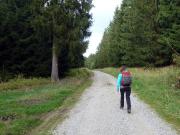 Breite Forstwege in trister Landschaft – es geht recht öde los!
