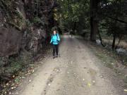 Auf dem Wanderpfad zwischen Königshütte und Rübeland