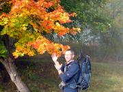 Goldener Herbst im Harz - am letzten Tag in voller Pracht!