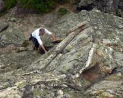 Fechi unterwegs im gut kletterbaren Quarzit des Jeschkengebirges
