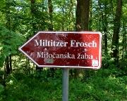Hinweisschild unmittelbar am Parkplatz vor dem Miltitzer Frosch