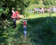 Abstieg nach Tauberscheckenbach, landschaftlich sehr schön