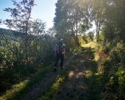 Ein recht netter Abschnitt, allerdings im Tal des Neuseser Baches