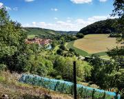 Blick zurück auf das idyllisch gelegene Tauberzell