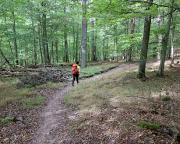 Romantischer Bergpfad zwischen Gamburg und Kloster Bronnbach