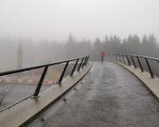 Auf der Fuß- und Radwegbrücke, dem Rennsteig, am Rondell bei Oberhof