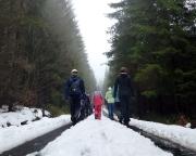 Bald waren 850 m Über NN erreicht und damit auch der Schnee