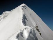 Auf dem schmalen Firngrat zum Gipfel des Mönchs