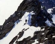 Weißkugel - Auf dem felsigen Gipfelgrat