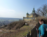 Am Spitzberghaus und in den Weinbergen über Radebeul