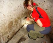 Knoflik - Geocaching im Lausitzer Gebirge einer der Bunkercaches
