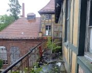 Sophienheilstätte Bad Berka – die Natur schlägt zurück
