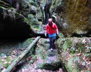 Steinstufen zeugen vom einstigen beliebten Kulturweg