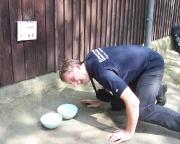 Wiese wollte allerdings kein Bier - er hat sich an der Hundetheke bedient ;-)))))