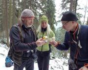 Königsweg im Elbsandsteingebirge, Ostwerwasser am Aufstieg zum Frienstein