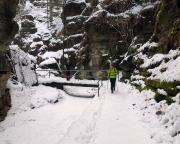 Im Uttewalder Grund, gerade im Winter hat diese Felsschlucht wegen ihrer Enge ihre besonderen Reize