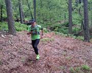 Trailrunning auf dem Auerhahnsteig - ohne GPS-Track wäre der Pfad nicht zu finden