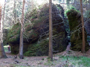 Der Gipfel Seife, unmittelbar neben dem Herbertfels - eine herrlich feuchte grüne Quiacke
