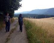 Tag 2 des Wochenendes - das um mich rudzierte Team auf dem Schaarwändeweg in Richtung Wildenstein.