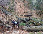 Entenpfützenweg  - So muss Trailrunning sein - etwas abseits im Gelände in einem sehr steilen Anstieg.