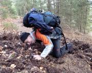 Auffällig auf der gesamten Wanderung, Wildschweinspuren über Wildschweinspuren - da muss man ja zum Schwein werden!!!