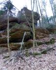 Aber es geht noch grüner und feuchter – der Dorfbachstein ist erreicht