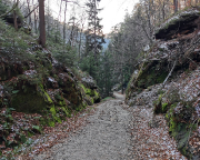 Blick in die Lehne beim Abstieg vom Schrammsteinweg
