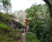 Almuth bei der Aufnahme des vorherigen Fotos – man beachte den Wald
