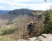 Waldsterben Bild 1 – Blick vom Fremdenweg in den Kleinen Zschand