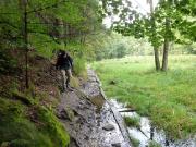 Meist aber ist man in unmittelbarer Nähe der Kirnitzsch und hat durchaus mit den Auswirkungen von Dauerregen und Hochwasser zu tun