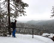 Die Aussicht am Taubenstein erreicht man nach ca. 2,5 km, dazu muss man etwa 250 m am ins Kirnitzschtal vorbei gehen