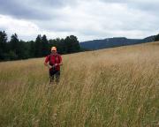 Nach dem Polenztal geht es über Sommerwiesen und Hochebenen in Richtung der Schrammsteine