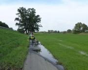 Kurz vor Guben, hier reicht das abfließende Hochwasser noch bis auf den Radweg - zur allgemeinen Freude, wie man sehen kann.