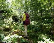 Nicht im Dschungel, wir suchen die Töpferkrone im Zittauer Gebirge