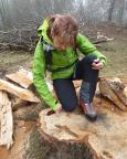 Bei der anschließenden Wanderung durch die Steinbrüche bei Jonsdorf
