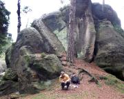 Geocache Oybiner Steine, hier an der Oberen Sumpfbuschspitze
