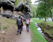 Am Goldbach Richtung Hausgrund zum Aufstieg auf den Pferdeberg