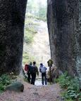 Am Naturdenkmal Schwarzes Loch, einem Steinbruch bei Jonsdorf