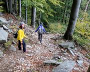Abstieg vom Hochwald auf dem steilen Grenzweg nach Lückendorf