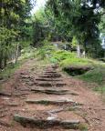 Die letzten landschaftlich reizvollen Meter auf den Pferdeberg