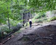 Auf dem schmalen Pfad zwischen Pferdeberg und Forsthaus Hain