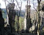 Turm der Felsenbrüder und Nördliche Waldtornadel