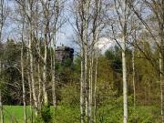 Elbsandsteingebirge im Mai_12