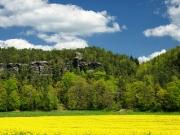 Elbsandsteingebirge im Mai_17