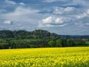 Elbsandsteingebirge im Mai